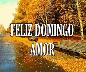Feliz Domingo Amor