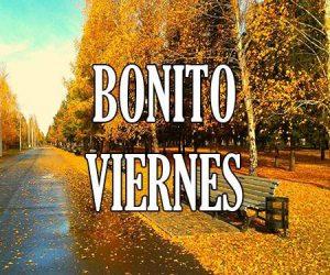 Bonito Viernes