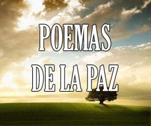 poemas de la paz