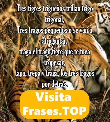 los mejores trabalenguas de tigres