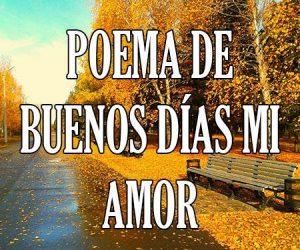 Poema de Buenos Dias Mi Amor