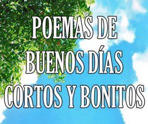 Poemas de Buenos Dias Cortos y Bonitos