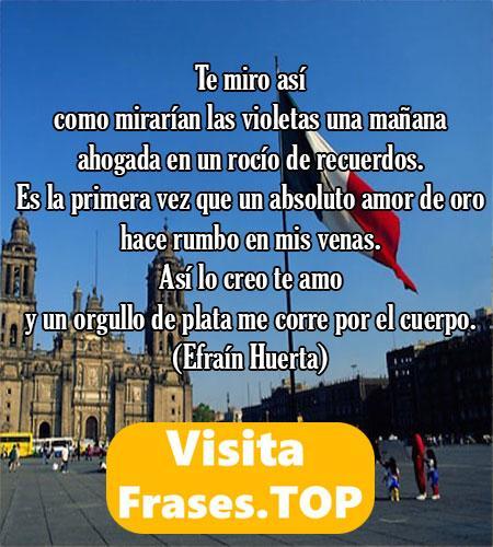 La Mejor Poesía Mexicana