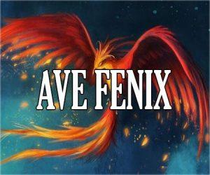 Ave Fénix