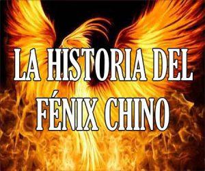 La Historia del Fenix Chino