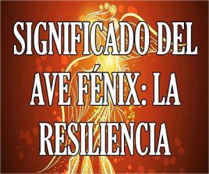 Significado del Ave Fenix La Resiliencia