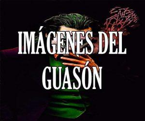 Imagenes del Guason