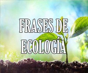 Frases de Ecología