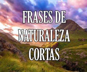 Frases de Naturaleza Cortas