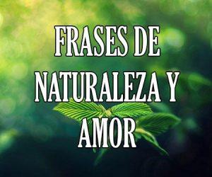 Frases de Naturlaleza y Amor