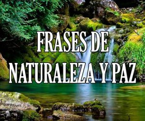 Frases de Naturaleza y Paz