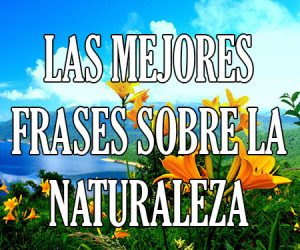 Las Mejores Frases sobre la Naturaleza