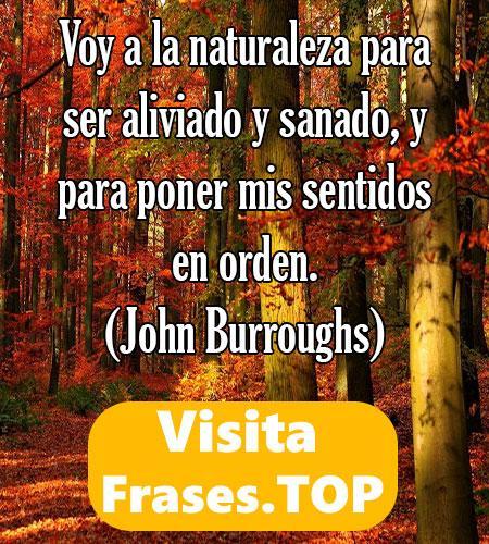mensajes sobre la naturaleza