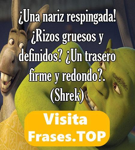 las mejores frases de Shrek 2