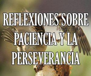 Reflexiones_sobre_la_Paciencia_y_la_Perseverancia
