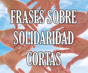 Frases sobre Solidaridad Cortas