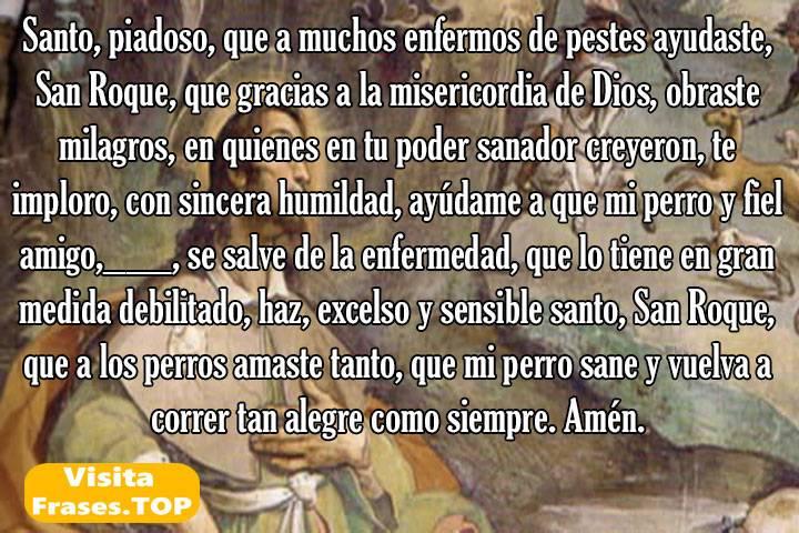 Oraciones a San Roque por las mascotas